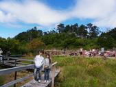 2011.10.08.09合歡山、清境農場:IMGP0481.JPG