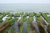 老梅石槽-藻礁奇觀:老梅石槽-藻礁奇觀1