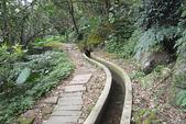 青山瀑布步道:DSC06218.JPG