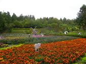 2011.10.08.09合歡山、清境農場:IMGP1332.JPG