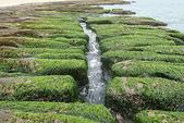 老梅石槽-藻礁奇觀:老梅石槽-藻礁奇觀12