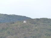 磺嘴山:P1440106.JPG