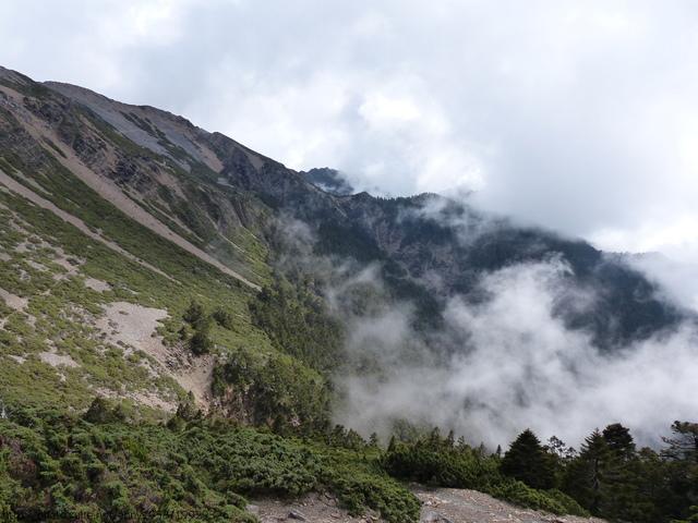 P1430177.JPG - 玉山三日遊之3:排雲山莊至玉山主峰
