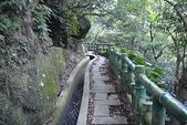 青山瀑布步道:DSC06213.JPG