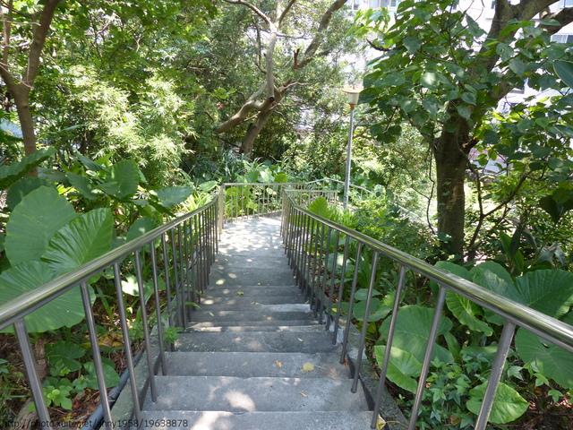 P1360725.JPG - 清白公園