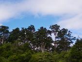 2011.10.08.09合歡山、清境農場:IMGP0479.JPG