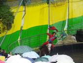 2011.10.08.09合歡山、清境農場:IMGP1289.JPG