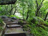 陽明山美景:IMGP4180.JPG