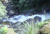 青山瀑布步道:DSC06333.JPG