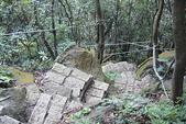 尖山湖步道~~~~越嶺記:DSC06362.JPG
