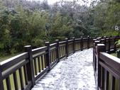 大崙頭山賞雪趣2016.01.24:P1390725.JPG