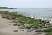 老梅石槽-藻礁奇觀:老梅石槽-藻礁奇觀8