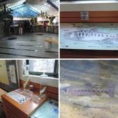 台灣櫻花鉤吻鮭生態中心:相簿封面