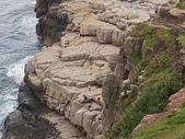 龍洞攀岩:IMGP0410a.jpg