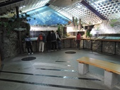 台灣櫻花鉤吻鮭生態中心:台灣櫻花鉤吻鮭生態中心9-20150301.JPG