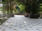 榮富公園~山櫻:榮富公園10-20150210.JPG