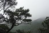 陽明山美景:DSC08363.JPG