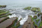 老梅石槽-藻礁奇觀:老梅石槽-藻礁奇觀3