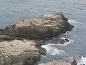 龍洞攀岩:IMGP0205.JPG