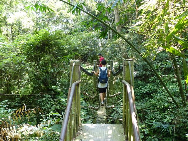 P1380832.JPG - 桐林森林生態園區