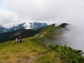 2011.10.08.09合歡山、清境農場:IMGP0806.JPG