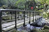青山瀑布步道:DSC06261.JPG