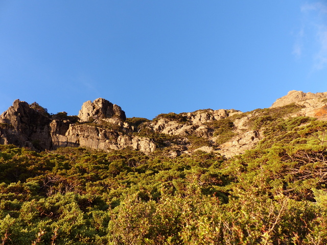 P1430256.JPG - 玉山三日遊之3:排雲山莊至玉山主峰