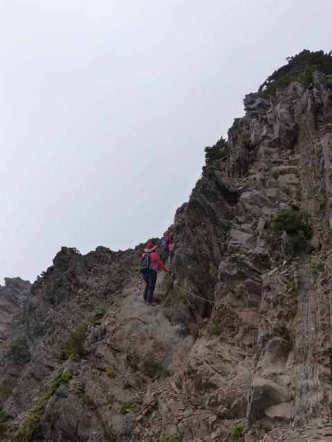 P1430185.JPG - 玉山三日遊之3:排雲山莊至玉山主峰
