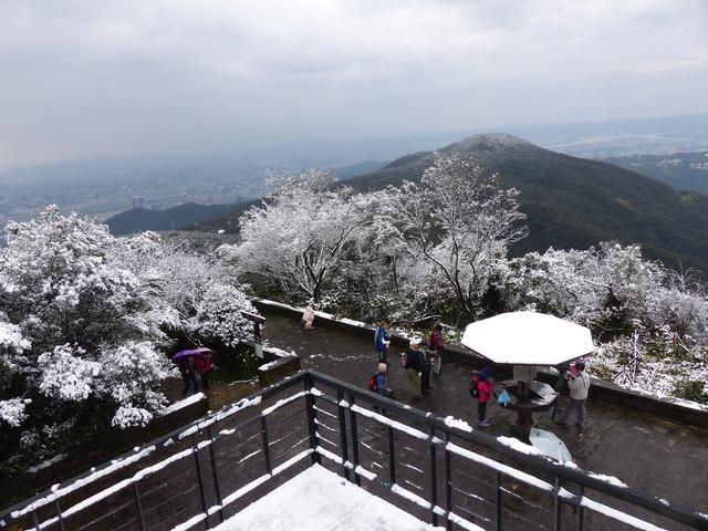 P1390805.JPG - 大崙頭山賞雪趣2016.01.24