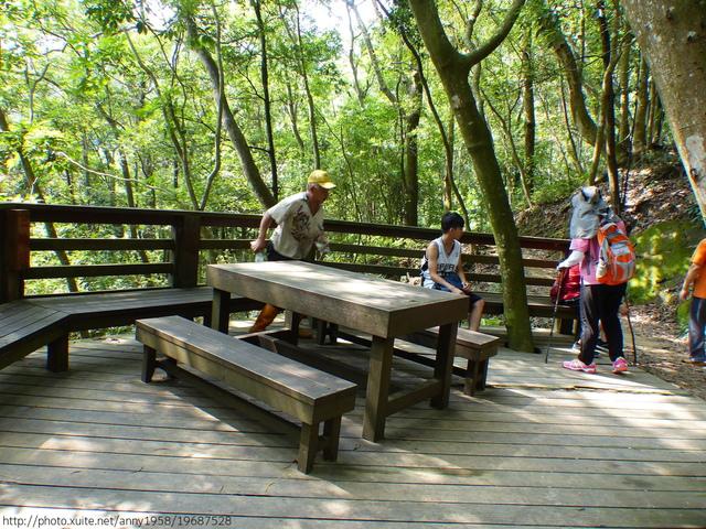 P1380707.JPG - 桐林森林生態園區