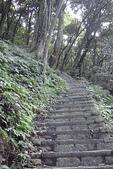尖山湖步道~~~~越嶺記:DSC06347.JPG