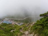 2011.10.08.09合歡山、清境農場:IMGP0579.JPG