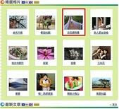 上精選相片:2010-4-3上精選白石湖吊橋.jpg
