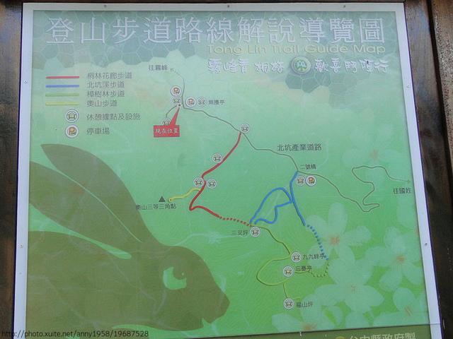 桐林森林生態園區步道地圖 - 桐林森林生態園區