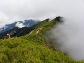 2011.10.08.09合歡山、清境農場:IMGP0799.JPG