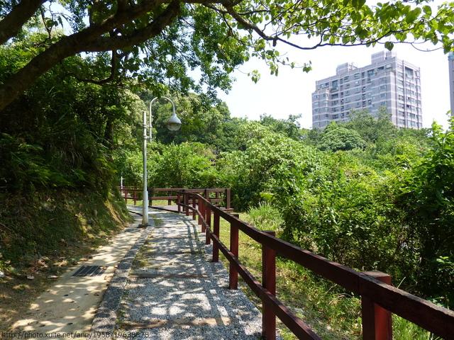 P1360700.JPG - 清白公園