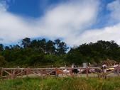 2011.10.08.09合歡山、清境農場:IMGP0488.JPG