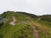 2011.10.08.09合歡山、清境農場:IMGP0834.JPG