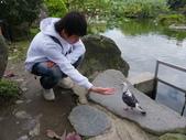 鳥類:IMGP4494.JPG