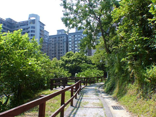 P1360705.JPG - 清白公園