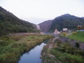 賞楓:鯉魚潭水庫IMGP3594.JPG