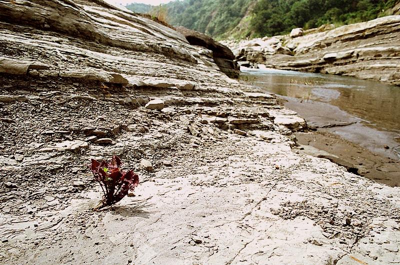 卓蘭大峽谷:很想拍點甚麼
