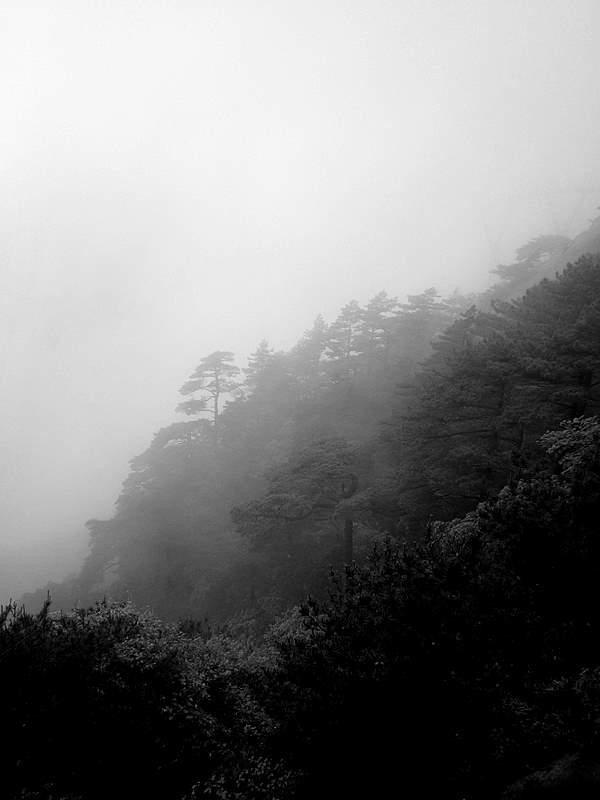 黃山行-出發與黃山:IMG_0299.JPG