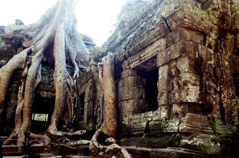 吳哥行(底片):Taprohm Temple