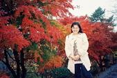 關於自己:箱根楓紅