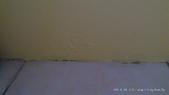 104培英小窩:DSC_0887-004.jpg
