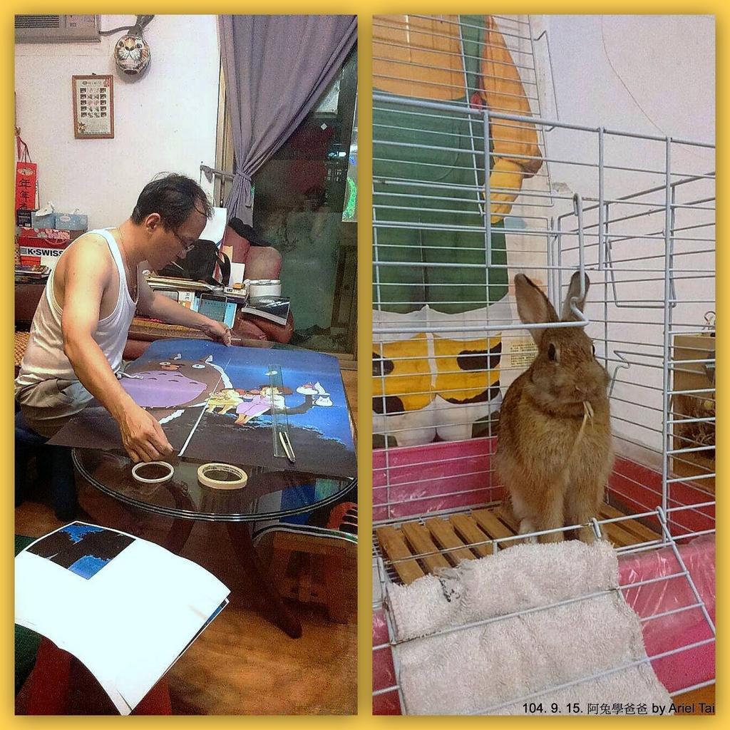 1040523姐姐家的兔兔:1040523姐姐家的阿兔-002.jpg