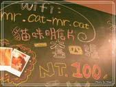 貓ちゃんの友達。貓咪先生的朋友:1063244080.jpg