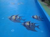 3D彩繪 牆壁彩繪 3d壁畫彩繪:3D彩繪 牆壁彩繪 3D立體壁畫 壁畫 彩繪作品 (69).jpg