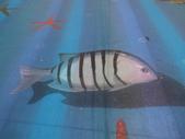 3D彩繪 牆壁彩繪 3d壁畫彩繪:3D彩繪 牆壁彩繪 3D立體壁畫 壁畫 彩繪作品 (40).JPG